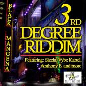 3rd Degree Riddim by Various Artists